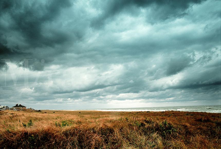 Beach grass and stormy sky.