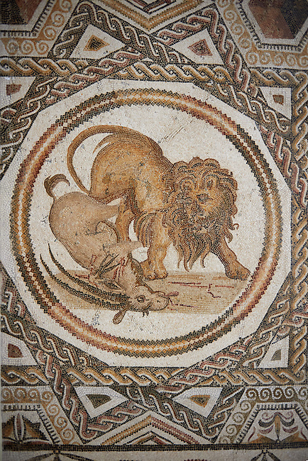 Picture of a geometric Roman mosaics design depicting lions hunting animals, from the ancient Roman city of Thysdrus. 3rd century AD. El Djem Archaeological Museum, El Djem, Tunisia.