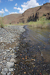 Gravel bar on the John Day River, Oregon.