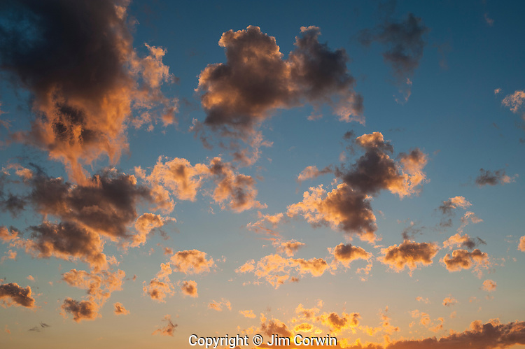 Cumulus fractus Clouds with blue sky, fair weather clouds at sunset
