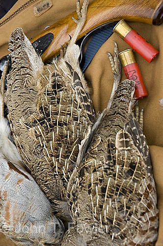 Still life, upland game hunting