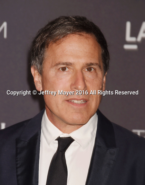 LOS ANGELES, CA - OCTOBER 29: Writer/director David O. Russell attends the 2016 LACMA Art + Film Gala honoring Robert Irwin and Kathryn Bigelow presented by Gucci at LACMA on October 29, 2016 in Los Angeles, California.