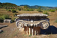 Ionic capital of the Temple of Artimis Sardis, originally the fourth largest Ionic temple when it was originally built in 300 B.C. In 150 AD under Roman rule when the worship  of the Emperor required all Roman cities to have a Temple dedicated to the Imperial family. The temple of Artimis was split into two sections with one half for Artemis and the Empress Faustina and the other for Zeus and Emperor Antoninus Pius and the present construction shows elements of Greek and Roman styles. Sardis archaeological site, Hermus valley, Turkey. A Harvard Art Museum excavation project.