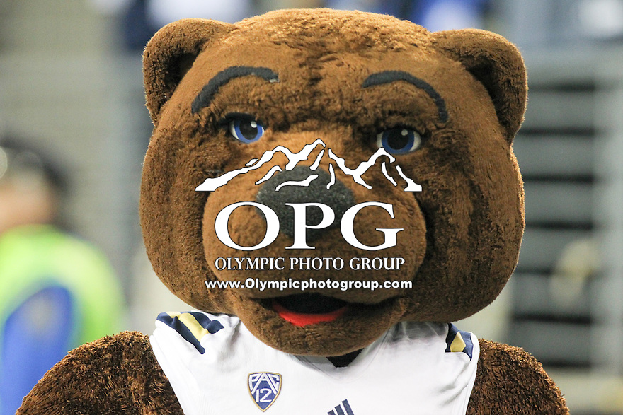 Nov 08, 2014:  UCLA's Joe Bruin against Washington.  Washington defeated UCLA at Husky Stadium in Seattle, WA.