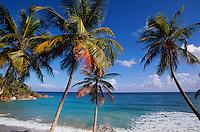 Bucht bei der Playa Grande Rio San Juan an der NordküsteDominikanische Republik,