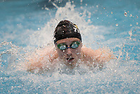NWA Democrat-Gazette/CHARLIE KAIJO Bentonville's Ryan Husband swims the boys 100 yard butterfly during a swim meet, Saturday, February 9, 2019 at the University of Arkansas HYPER pool in Fayetteville.