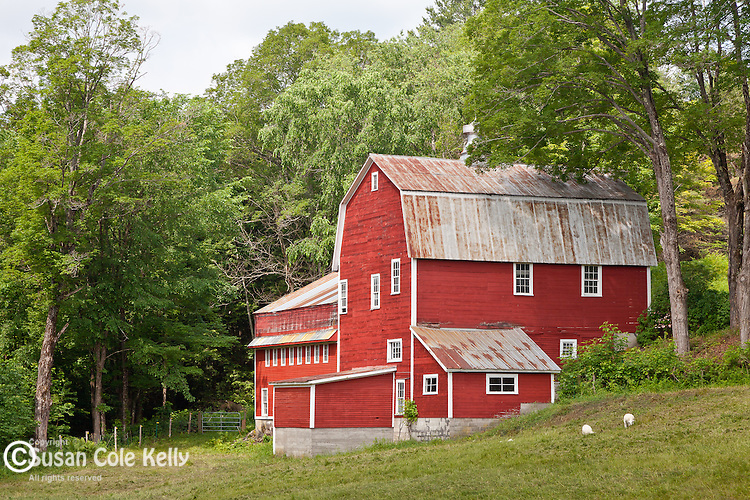 A red barn in Brownsville, VT, USA
