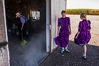 CAPULIN, MEXICO - OCTOBER 31: Children of the Mexican Mennonite family of Johan Giesbrecht, do their chores on their farm on the 31st of October, 2015 in Capulin, Mexico. <br /> <br /> Daniel Berehulak for The New York Times