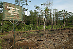 A sign the local forest department that calls for conservation rusts away disregarded, near a tract of forest clearing