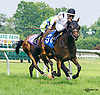 Janine Melnitz winning at Delaware Park on 7/25/16
