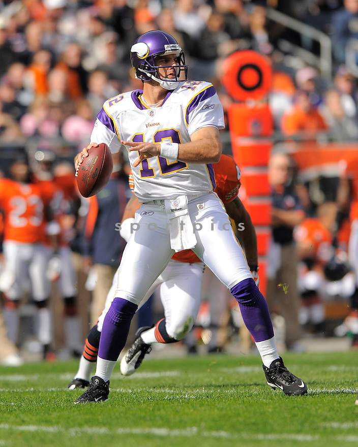 GUS FREROTTE, of the Minnesota Vikings  in action against the Chicago Bears during the Vikings game in Chicago, IL  on October 19, 2008... The Buccaneers won the game 48-41