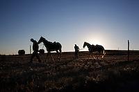 Campobasso: due uomini passeggiano a cavallo nelle campagne nei dintorni di Campobasso