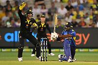 1st November 2019; Melbourne Cricket Ground, Melbourne, Victoria, Australia; International T20 Cricket, Australia versus Sri Lanka; Alex Carey of Australia appeals for a wicket as Kusal Perera of Sri Lanka is hit on the pad - Editorial Use