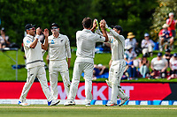 Colin De Grandhomme and team mates  celebrates the wicket of Dawid Malan of England during Day 4 of the Second International Cricket Test match, New Zealand V England, Hagley Oval, Christchurch, New Zealand, 2nd April 2018.Copyright photo: John Davidson / www.photosport.nz