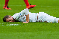 Gylfi Sigurdsson of Swansea City  lies on the floor after missing a shot for Swansea during the Barclays Premier League match between Swansea City and Southampton  played at the Liberty Stadium, Swansea  on February 13th 2016