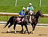 Picko's Pride before The Hockessin Stakes at Delaware Park racetrack on 6/18/14
