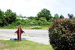 Highway 78 in South Carolina between Orangeburg and Aiken.