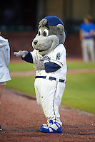 Mobile BayBears mascot Baby Bear before a game against the Mississippi Braves on April 28, 2015 at Hank Aaron Stadium in Mobile, Alabama.  The game was suspended after the top of the second inning with Mobile leading 3-0, the BayBears went on to defeat the Braves 6-1 the following day.  (Mike Janes/Four Seam Images)