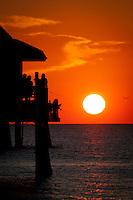 Tessa Gulfshore Life