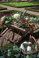 """Europe/France/Centre/37/Indre-et-Loire/Villandry: Bouteille de """"Azay"""" rosé et légumes des jardiniers"""