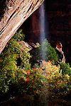 Waterfall at the Emerald Pools in Utah's Zion.