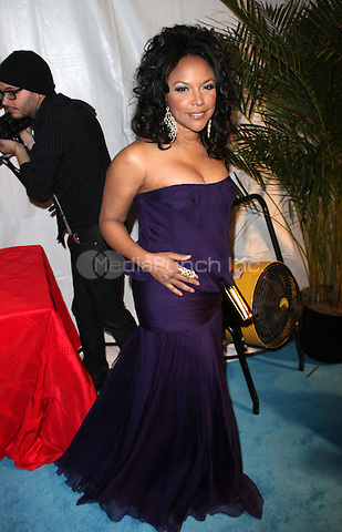 Lynn Whitfield<br />attending the Creative Coalation's 2009 Inaugural Ball at The Harmon Center in Washington, D.C.<br />January 20, 2009<br />&copy; Alice Erardy / Starlitepics /MediaPunch