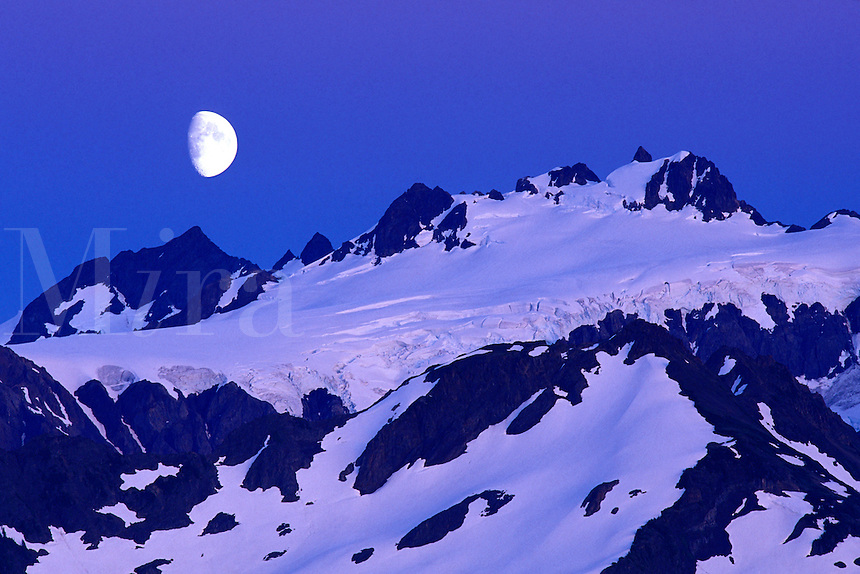 Moon over Mount Olympus at dusk, Olympic National Park, Washingto