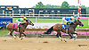 Fashionable Frolic winning at Delaware Park on 6/20/15
