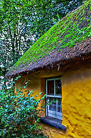 Looking up close at a portion of an old thatched roof cottage in Ireland.