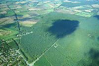 Deutschland, Schleswig- Holstein, Staatsforst Trittau, geplanter Campingplatz