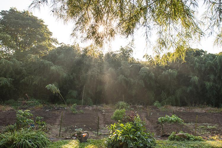 West State Street Garden. Photo by Ben Siegel