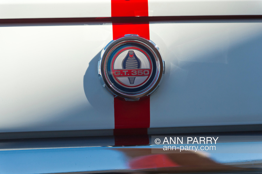 Sept. 15, 2012 - New Hyde Park, New York, U.S. - A closeup of Cobra emblem of Mustang GT350, red with white stripes, that is at the New York AutoFest at New Hyde Park Car Show and Street Fair.