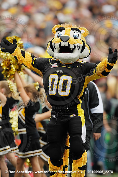 September 6, 2010; Hamilton, ON, CAN; Hamilton Tiger-Cats mascot Stripes. CFL football: Labour Day Classic - Toronto Argonauts vs. Hamilton Tiger-Cats at Ivor Wynne Stadium. The Tiger-Cats defeated the Argonauts 28-13. Mandatory Credit: Ron Scheffler.
