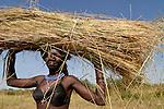 UGANDA Karamoja , Karimojong a pastoral tribe , woman carry straw on her head / UGANDA Karamoja , Volk der Karimojong , Frau mit Stroh auf dem Kopf