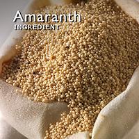 Amaranth Pictures | Amaranth Photos Images & Fotos