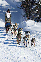 Michael Suprenant on Long Lake at the Re-Start of the 2012 Iditarod Sled Dog Race