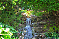 A scenic stream and waterfall in the rock gardens at the Royal Botanical Gardens in Hamilton / Burlington.