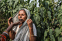 """Nilimoni Kumar, 56 years old, comes from the village of Tola. In March 2012, she was branded as witch after her neighbours' cat had died. After suffering two almost fatal attacks carried out by some villagers armed with axes, she went to a nearby police station, where she was forced to compromise the matter with her accusers. Nevertheless, her neighbours' keep on accusing her. """"Whenever I pass by their house, they bring their kids inside saying 'Go in, the witch is coming'. Nilimoni was photographed at Chuthney's house because she was afraid to bring journalists in her house fearing that the neighbours might attack her again."""