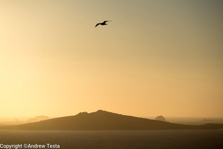 UK. St Mary's. 29th May 2013<br /> The island of Samson at sunset.<br /> &copy;Andrew Testa for the New York Times