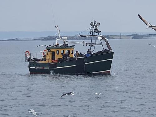 Bertie's boat named Venture