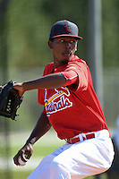 St. Louis Cardinals pitcher Julio Mateo (15) during practice before a minor league spring training game against the New York Mets on April 1, 2015 at the Roger Dean Complex in Jupiter, Florida.  (Mike Janes/Four Seam Images)