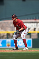 Arizona Diamondbacks pitcher Austin Byler (47) during an instructional league game against the San Francisco Giants on October 16, 2015 at the Chase Field in Phoenix, Arizona.  (Mike Janes/Four Seam Images)