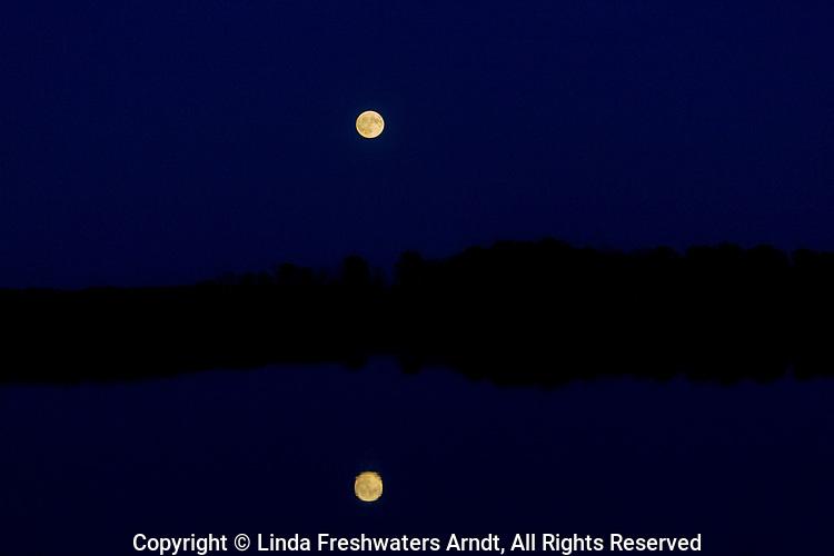 Crex Meadows moon reflection (northwest Wisconsin).