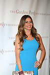 Actress Sofia Vergara Attends The Gordon Parks Foundation 2013 Awards Dinner and Auction Held at the Plaza Hotel, NY