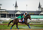 LOUISVILLE, KENTUCKY - MAY 01: Flor De La Mar prepares for the Kentucky Derby at Churchill Downs in Louisville, Kentucky on May 01, 2019. Evers/Eclipse Sportswire/CSM