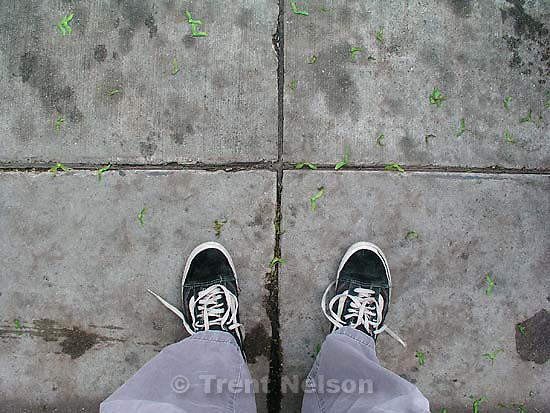 Trent feet<br />