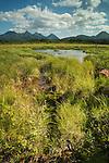 Road to Valdez; Alaska, USA; litter; oil drum; gun shell; scenic; wetland; mountains; sunny;<br /> outdoors;