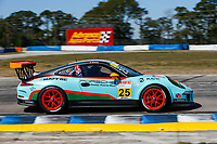 #25 NGT Motorsport, Porsche 991 / 2016, GT3G: Victor Gomez IV