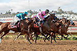 DEL MAR, CA  AUGUST 17: The start of the Torrey Pines Stakes (Grade lll) on August 17, 2019 at Del Mar Thoroughbred Club in Del Mar, CA.) Photo by Casey Phillips/Eclipse Sportswire/CSM)
