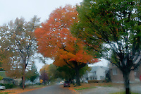Fall scenes around Sarnia's south end.